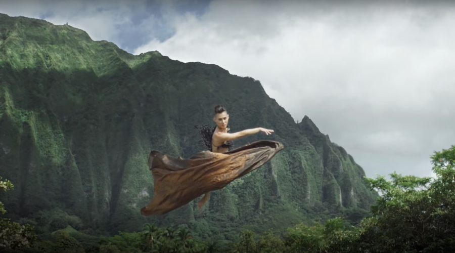 sharing-hawaii-with-the-world image